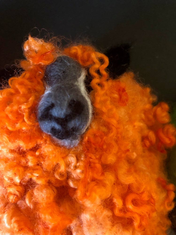 Image of My amazing Multicoloured Sheep