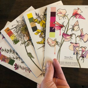 Image of Botanical greetings cards
