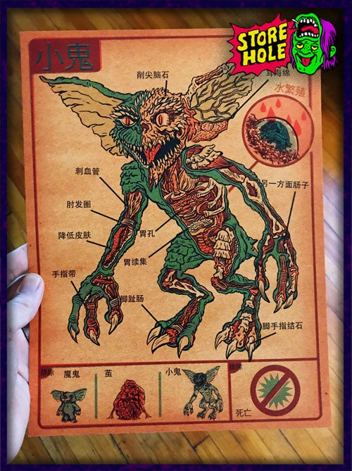 Image of Anatomy Of The Gremlin Print