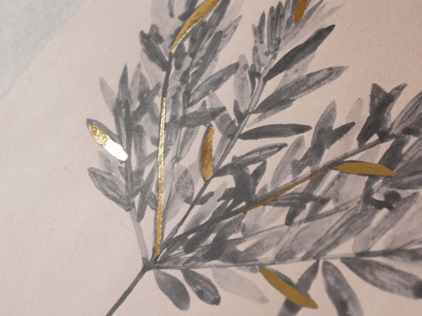 Daphne Gnidium - botanic art print - arminho