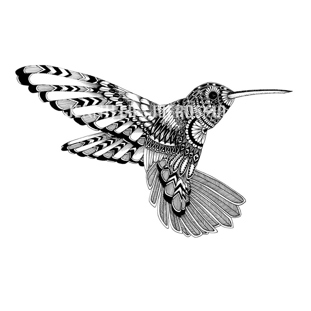 Image of Flora the Hummingbird