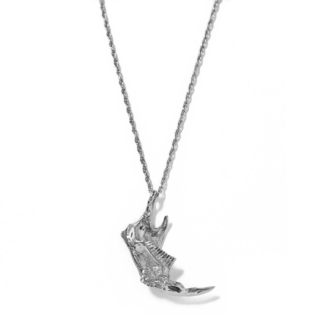 Image of Prairie Rat Jaw Necklace