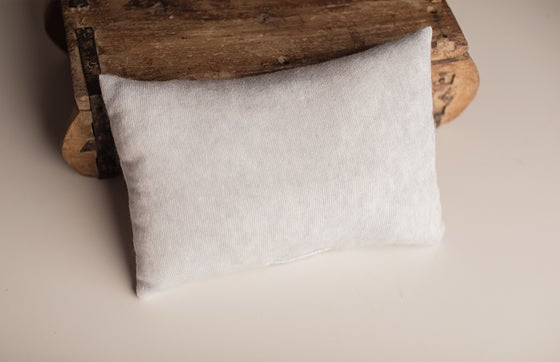 Image of JAN posing pillow - light blue gray