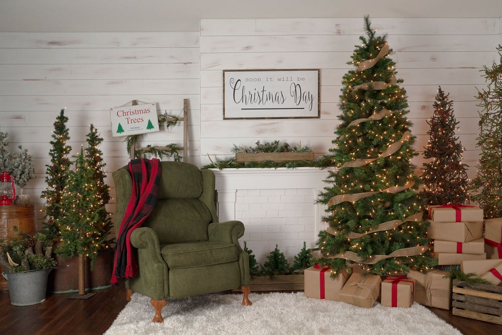 Image of Christmas Mini Session - Indoor