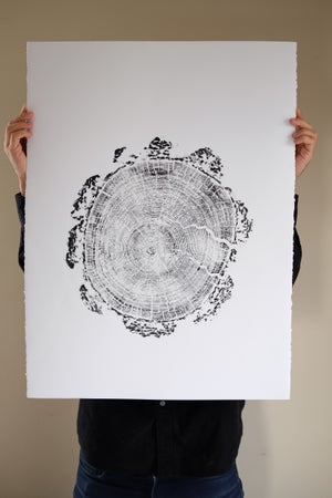 Image of geosic 22x30