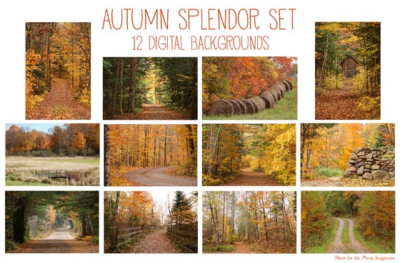 Image of Autumn Splendor Set
