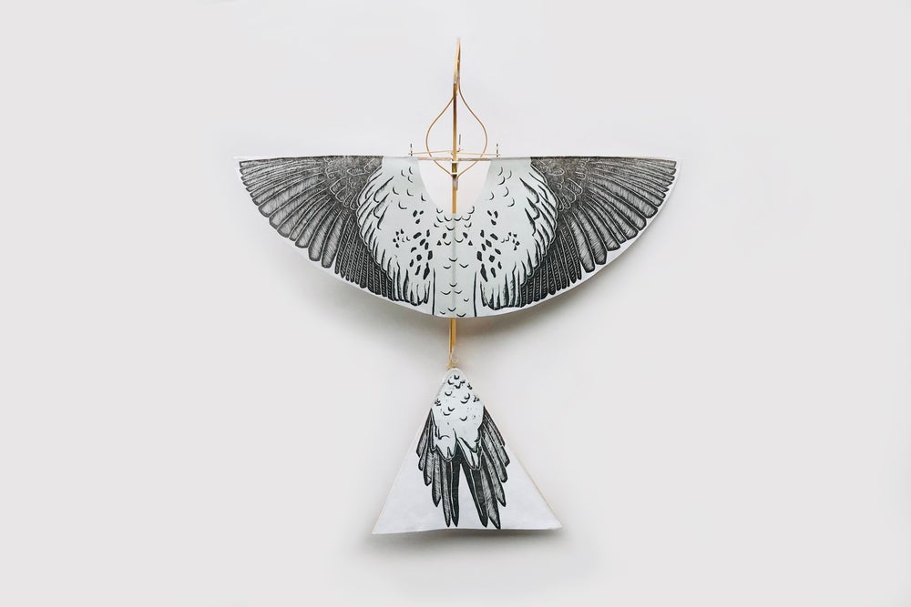 Image of The Flying Martha by Haptic Lab (Artist Edition)
