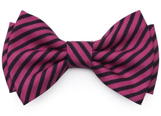 Image of Fuchsia & Black stripes pre-tied Bow tie