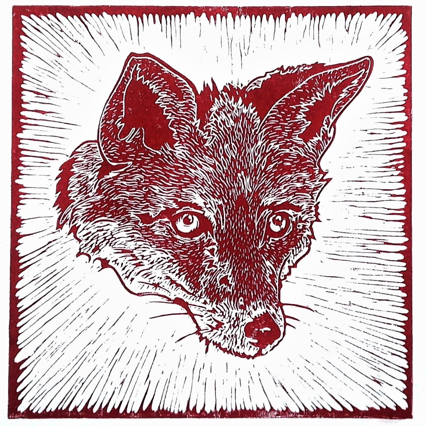 Image of URBAN FOX
