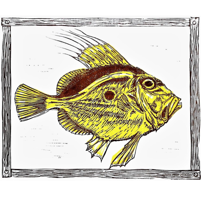 Image of JOHN DORY, St Peter's fish.