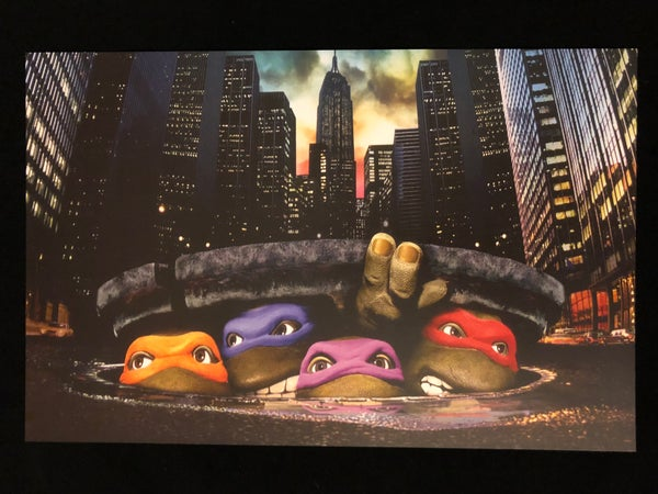 Image of TMNT Sewer Print