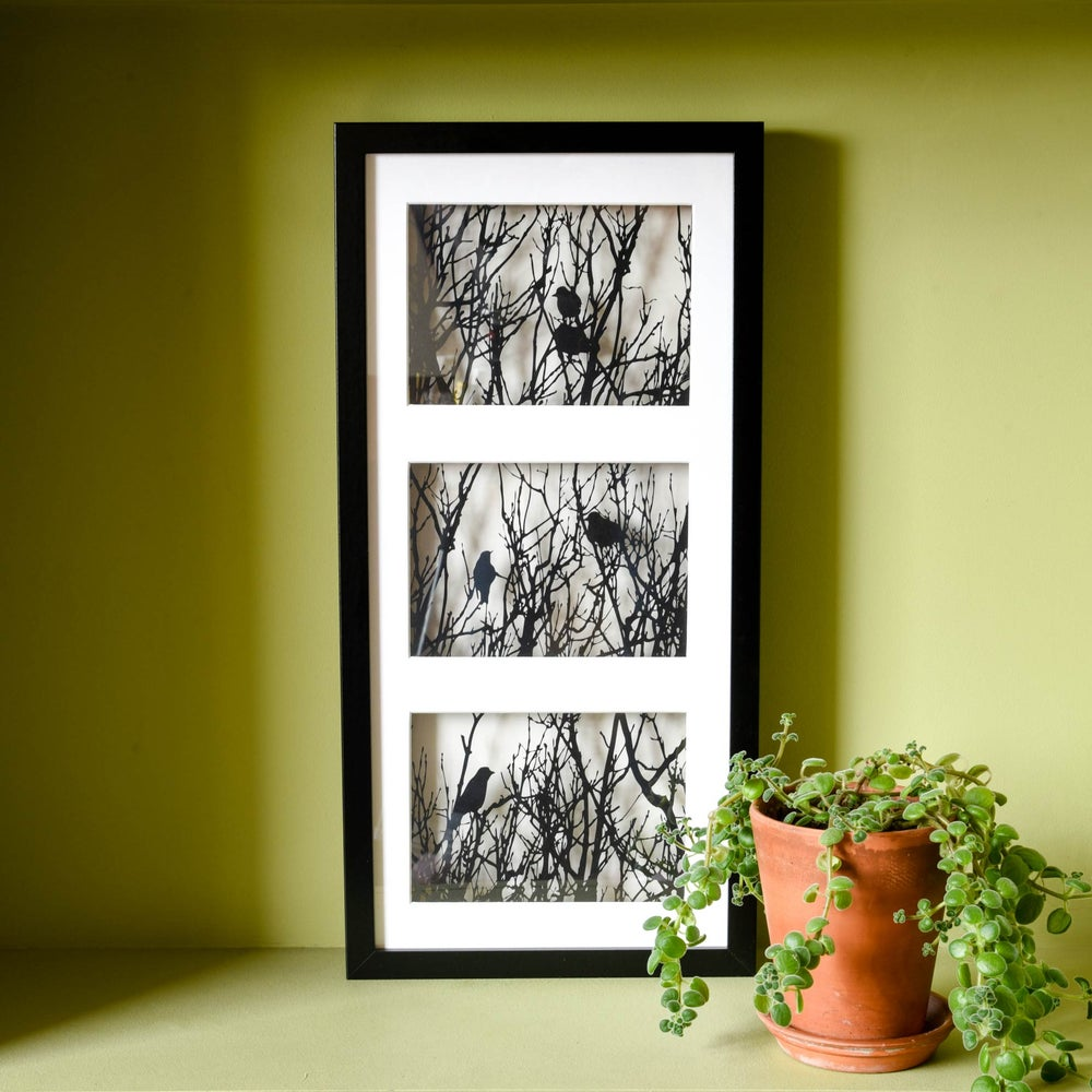 Image of Entangled Triptych Framed Papercut