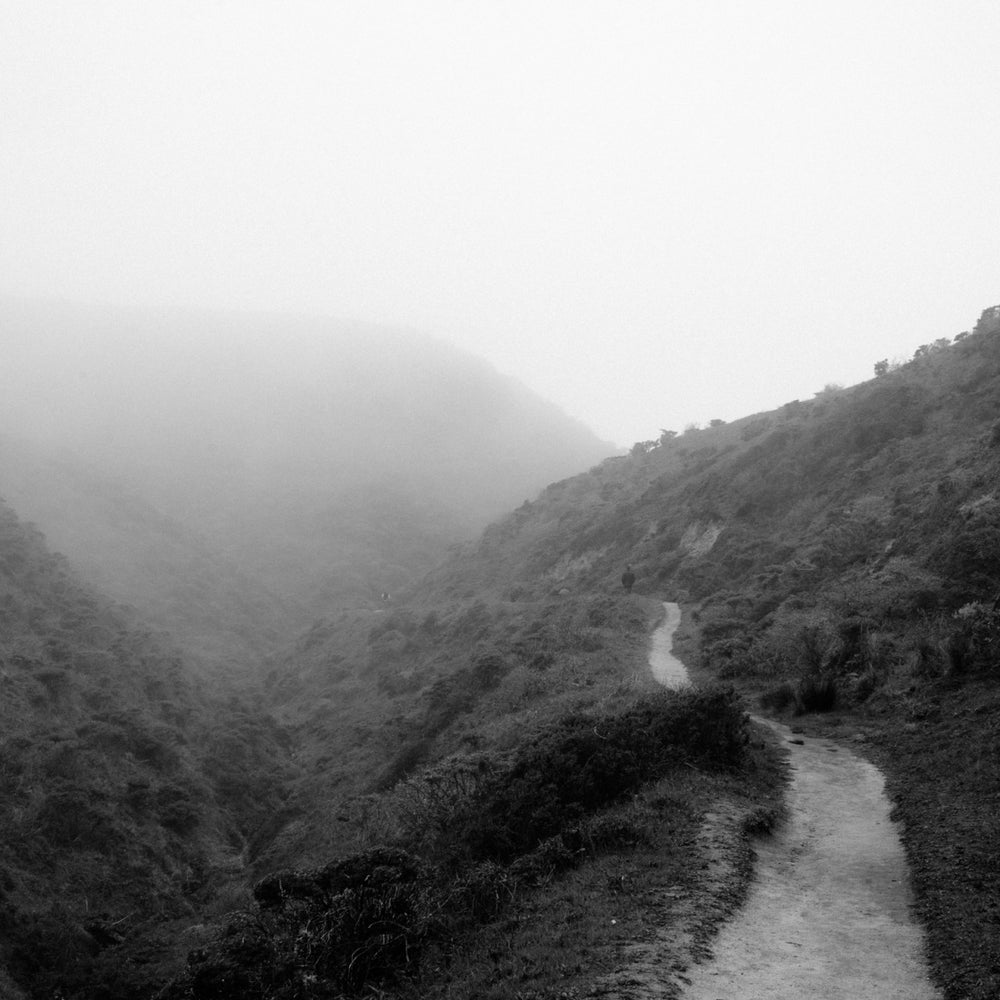 Image of McClure's Beach Trail, Pt. Reyes, CA