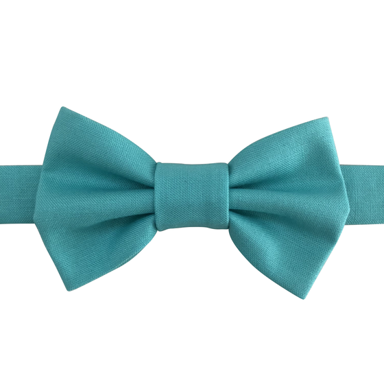 Image of pool bow tie
