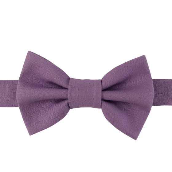 Image of wisteria bow tie