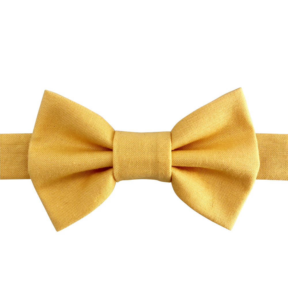 Image of cheddar bow tie