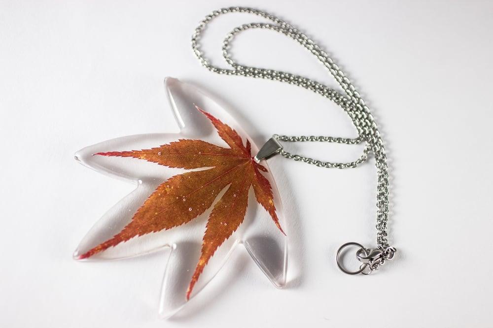 Image of Autumn Japanese Maple Leaf Extra-Large #1