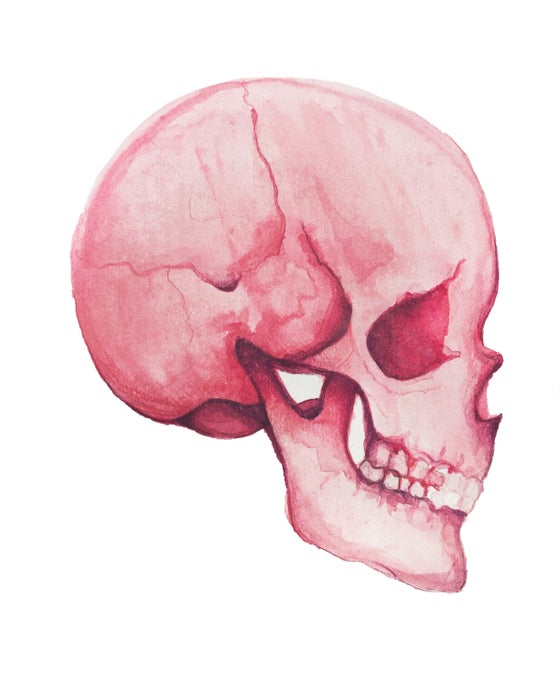Image of Pink Skull Original