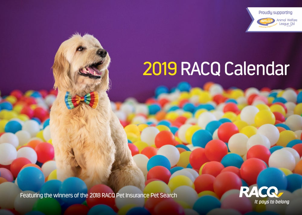 Image of RACQ Pet Search 2019 Fundraising Calendar