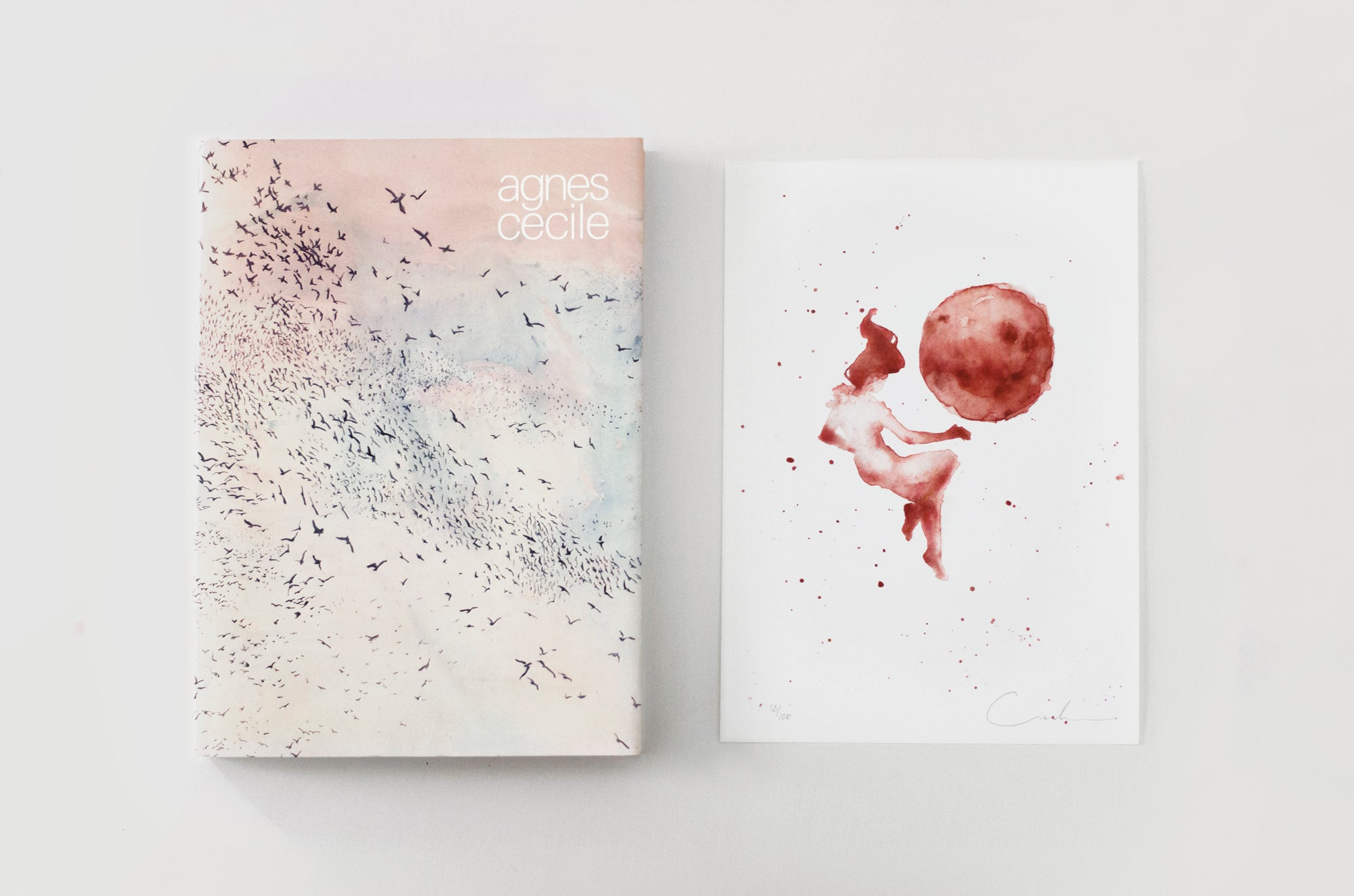 Agnes-Cecile Artbook Limited Edition (in the huge silence)