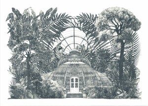Image of Palm House Panorama