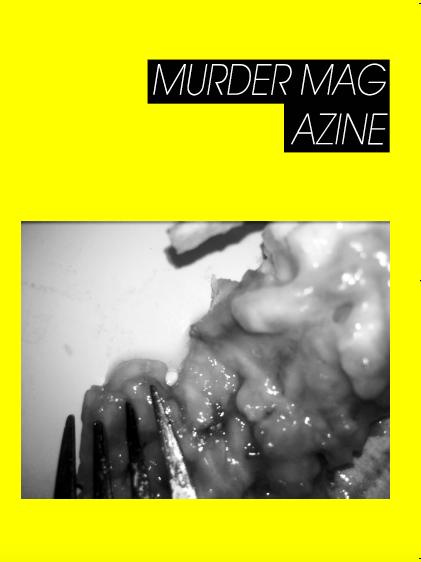 Image of MURDER MAGAZINE NO. 2