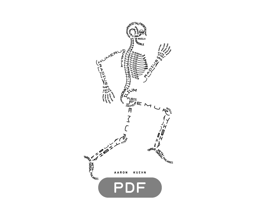 Image of Skeleton Typogram - PDF on white