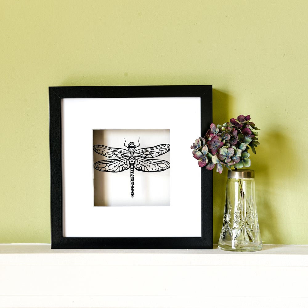 Image of Dragonfly framed papercut