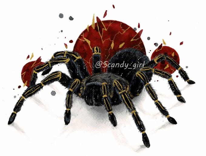 Image of Inktober day 29 Tarantula Print