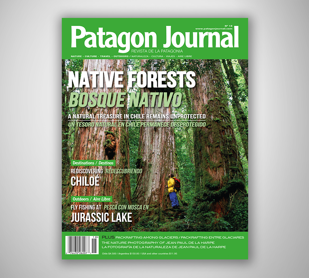 Image of PATAGON JOURNAL #18