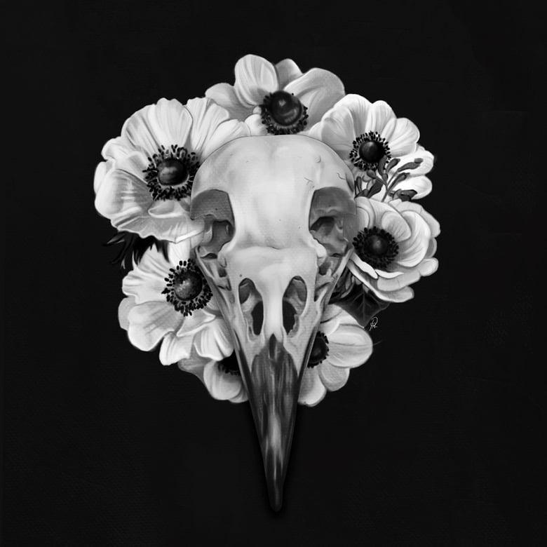 Image of Crow