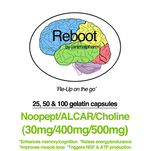 Image of NOOPEPT(30MG) + ALCAR(400MG) + CHOLINE(500MG)