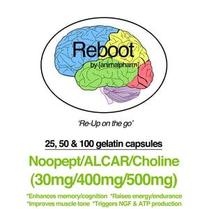 Image of NOOPEPT(30MG) + ALCAR(400MG) + CHOLINE(500MG)