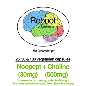 Image of NOOPEPT(30MG) + CHOLINE(500MG) CAPSULES