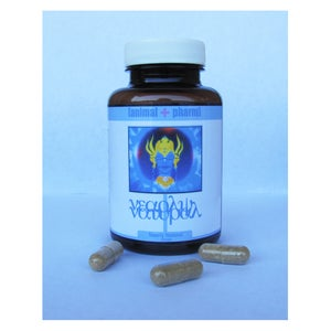 Image of NEARLY NATURAL NOOTROPIC BLEND (NOW WITH CHAGA AND REISHI<3) [ADAPTOGENIC]