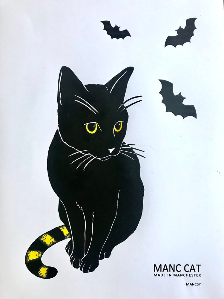 Image of MANC CAT with BATS Halloween Special