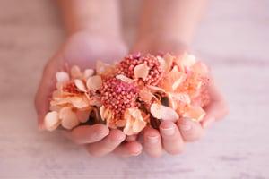 Image of Peineta Flores Preservadas - Flor de Arroz Coral