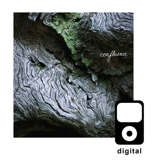 Image of Confluence - Digital Download