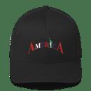 Image 1 of AMERICA FLEX FIT HAT