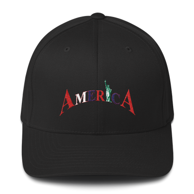 Image of AMERICA FLEX FIT HAT