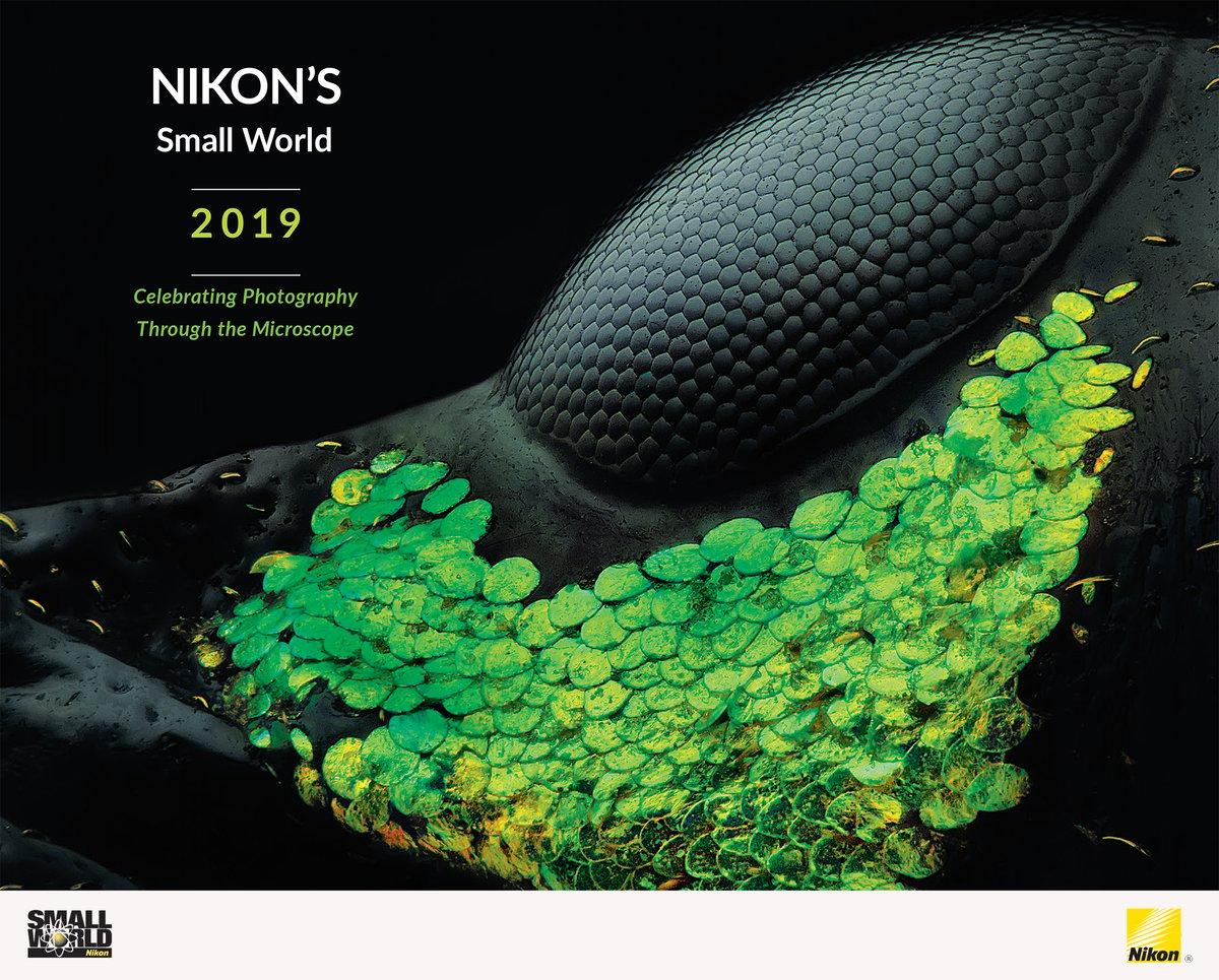 Image of 2019 Nikon Small World Calendar