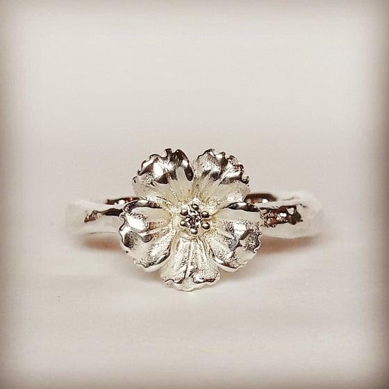Beeld van Silver Anemone with diamond