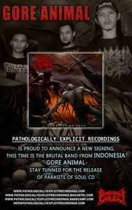 Image of BRUTAL PACK ALLIANCE-TOMB+GORE ANIMAL+ SEPTYCEMIA CDS