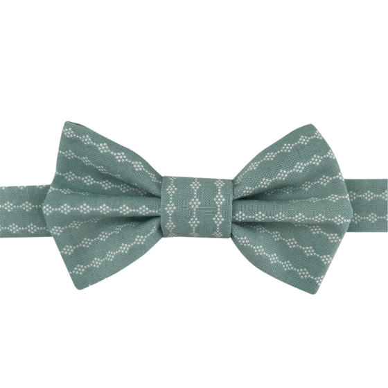 Image of ollie bow tie