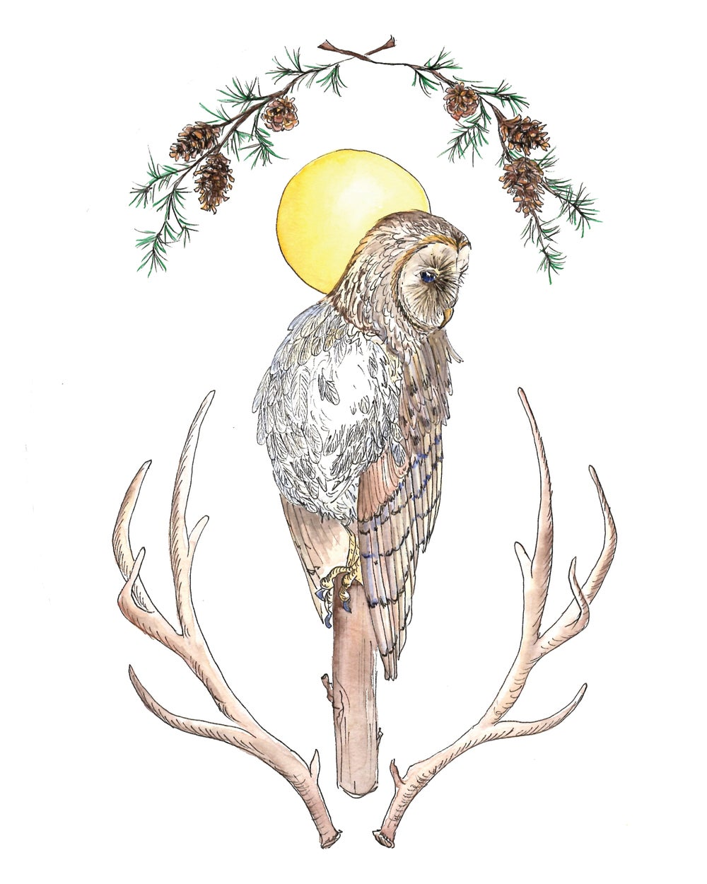 Image of Winter Owl Print