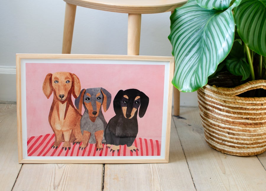 Image of three dachshunds