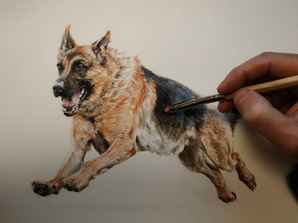 Image of Pastel pencils portrait / Retrato con lápices pastel