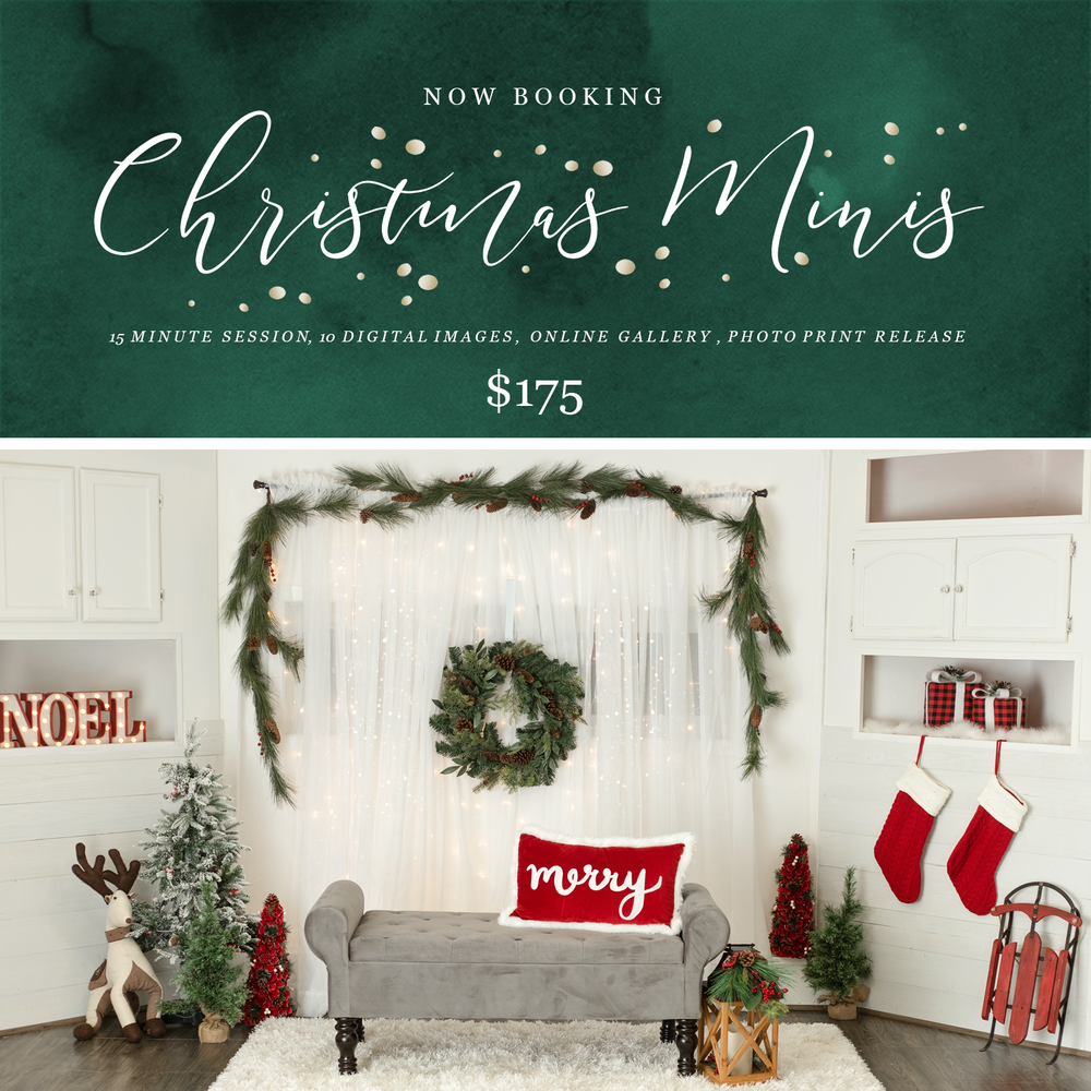 Image of Christmas Mini Sessions 2018 - Studio