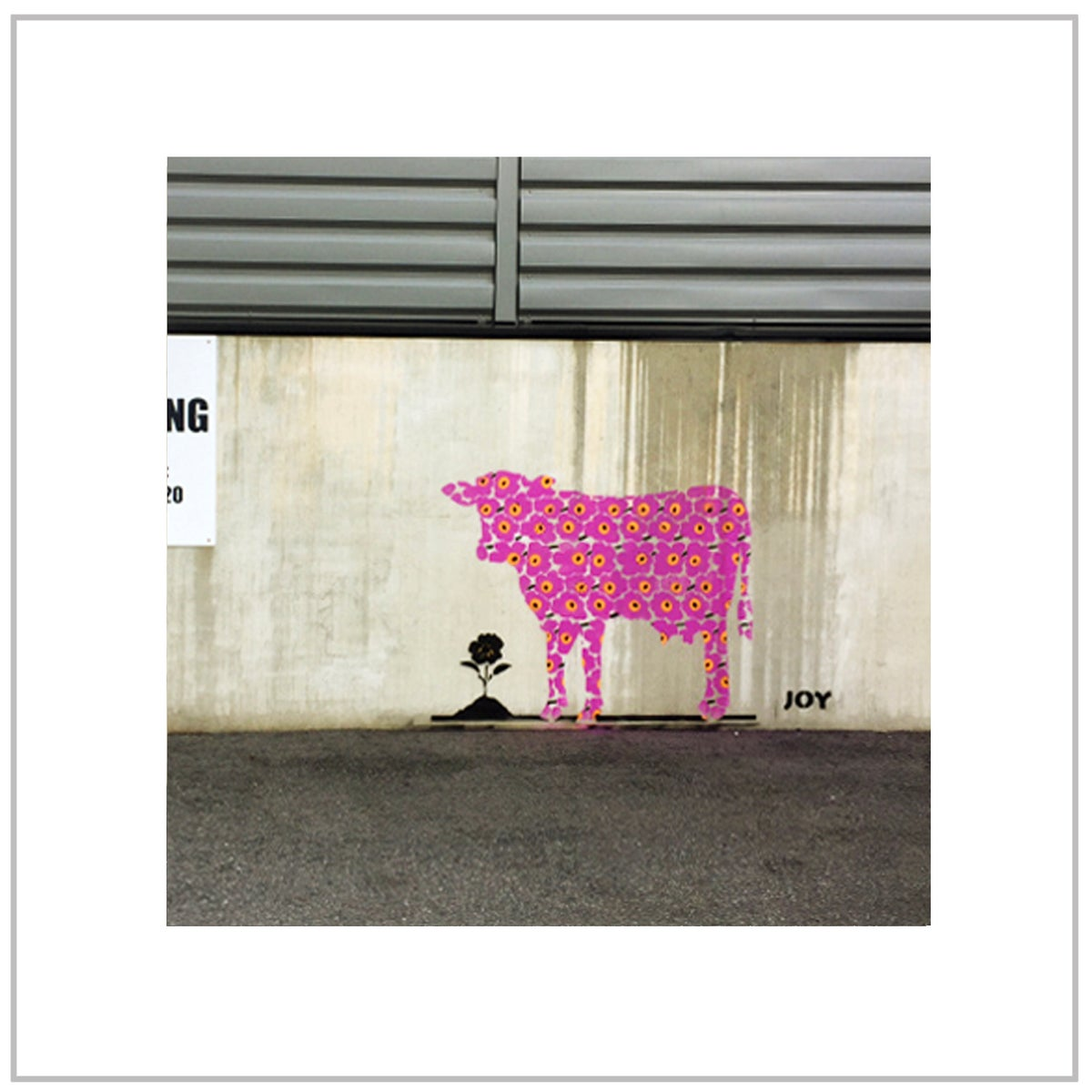 Image of FLOWER COW -  PETROLBLÅ