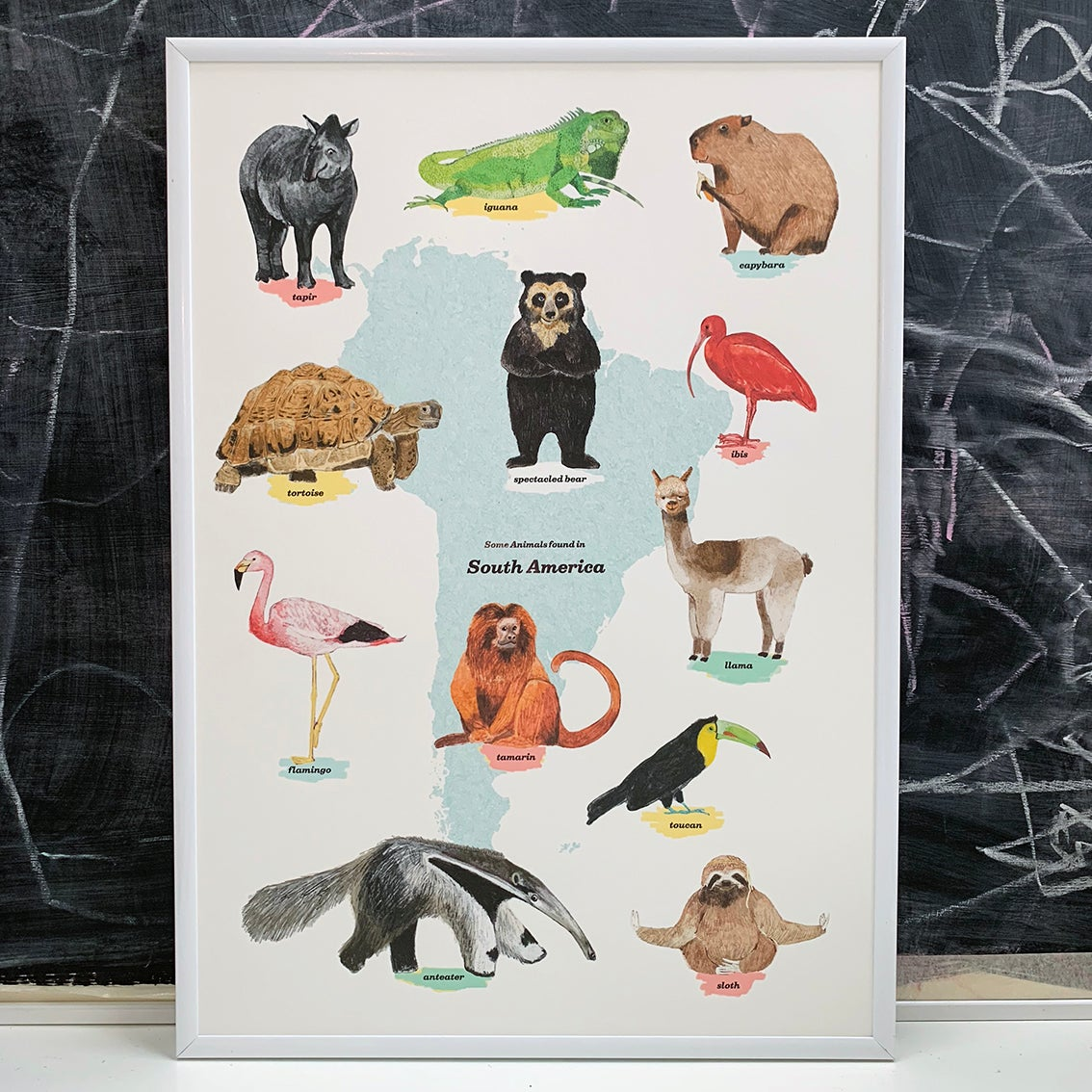 Image of South America Animals Print